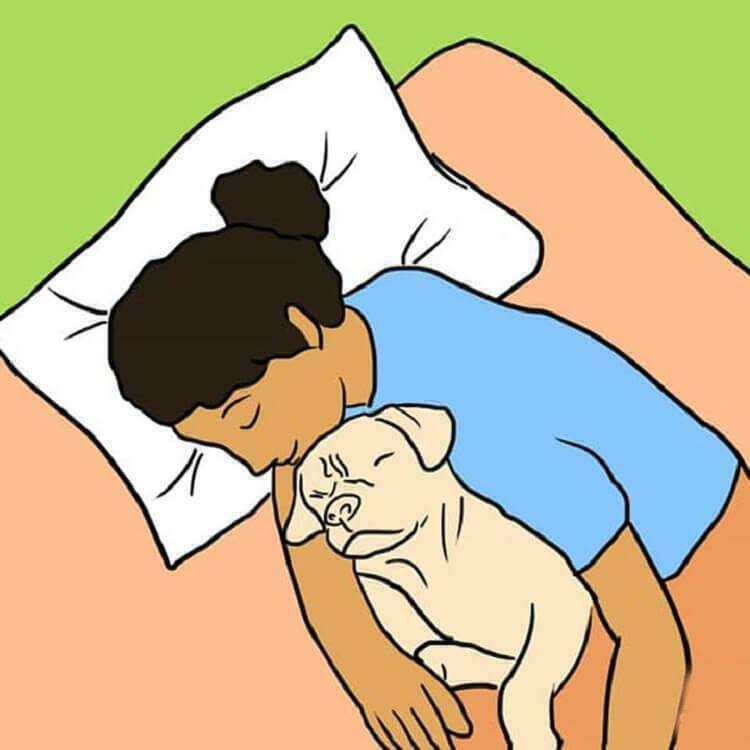 7 причин разрешить собаке спать в кровати