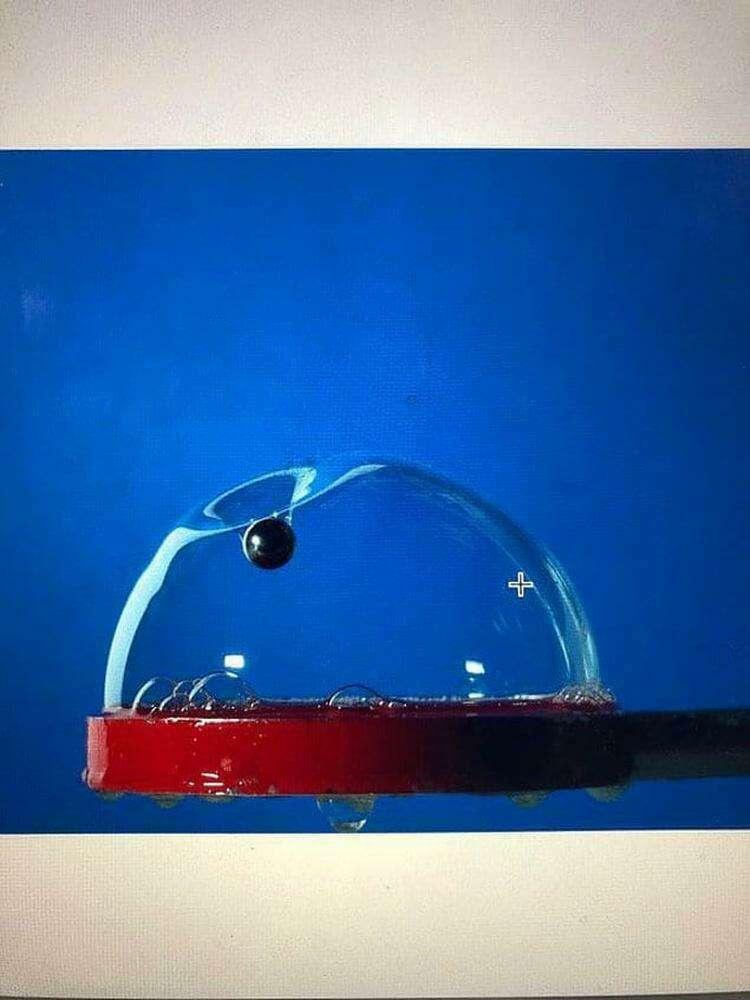 Кто-то успел сделать фото до того, как пузырь лопнет 😱