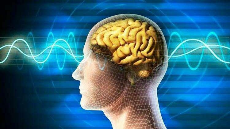 научные эксперименты: чтение мыслей