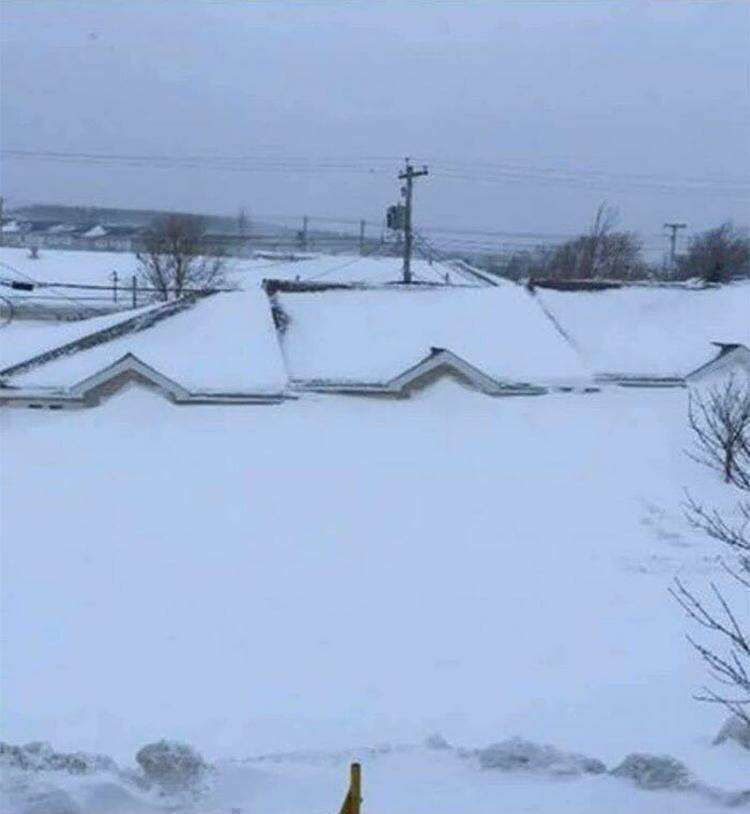 15. Последствия снегопада, Ньюфаундленд