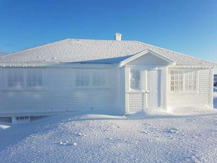 5. Ледяная корка на доме, мыс Бонависта (остров Ньюфаундленд)