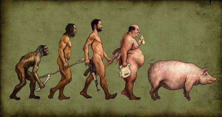 19 сатирических карикатур про эволюцию