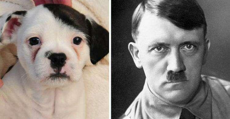 Адольф Гитлер-2