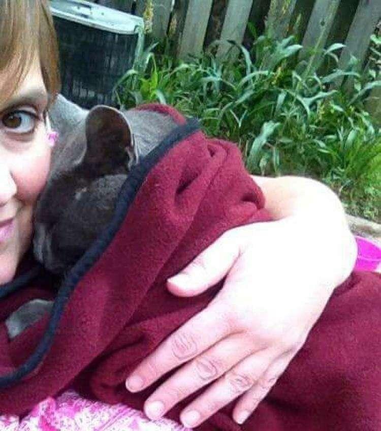 Женщина целый год завоёвывала доверие кота-бродяги, и он превратился в большого домашнего пушистика!