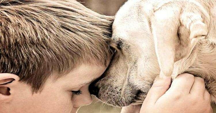 """Вечная дружба: """"Пусть собаки мало живут, зато врата рая для них всегда открыты"""""""
