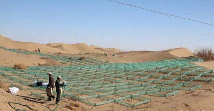Как китайцы пустыню озеленяли... в течение 60 лет!