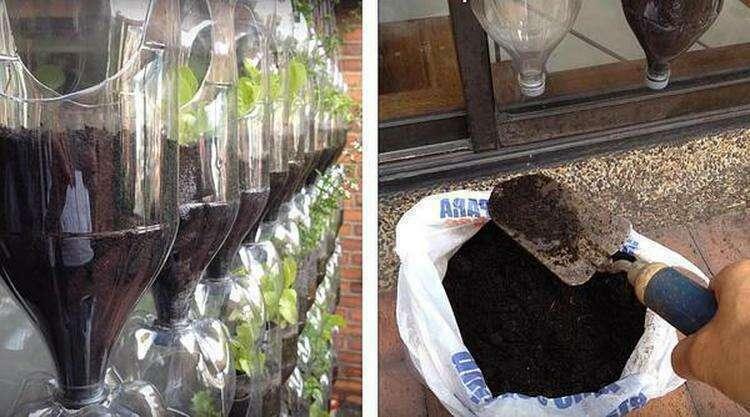 Набиваем горшки грядки. Фото автора