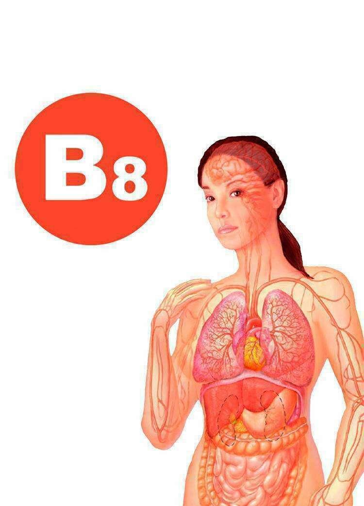 Витамин В8 (инозитол): при бессоннице, выпадении волос и похудении