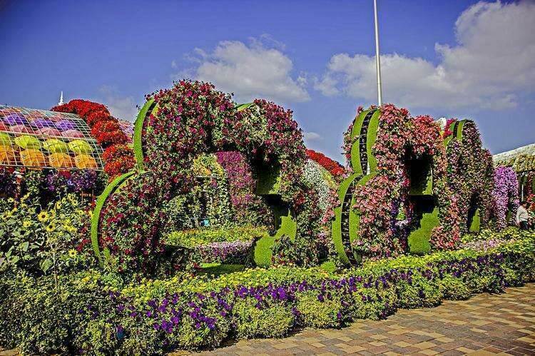 Сад чудес в Дубайленде