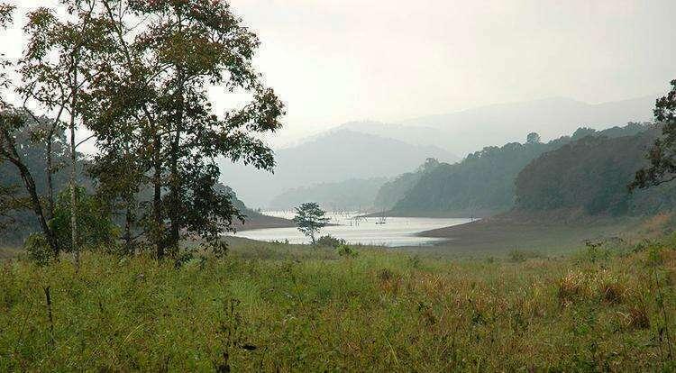 Национальный парк и заповедник дикой природы Перияр