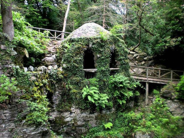 Лесной парк Толлимор в Северной Ирландии