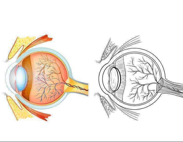 Восстановление зрения по Дипаку Чопре