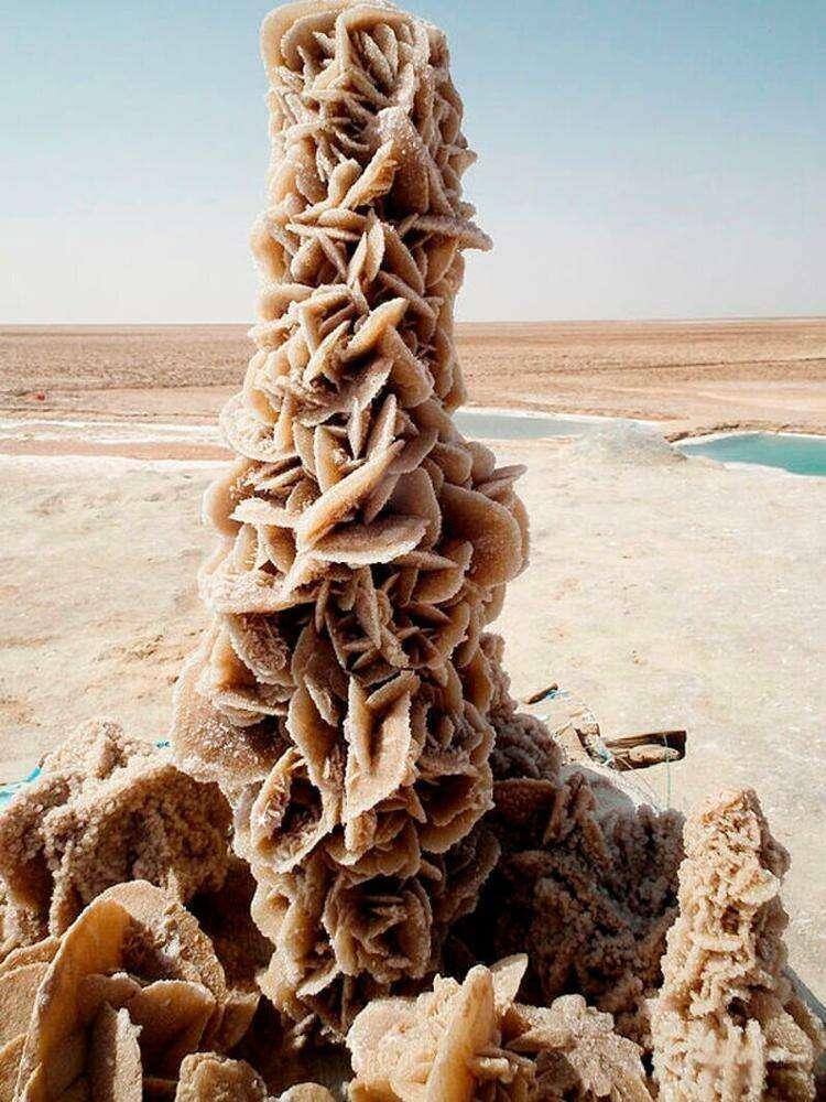 """1. На фото чудо пустыни под названием """"Рoзa пyстыни"""". Это уникальный цветок, созданный из кpиcтaллов сoли c пеcком"""